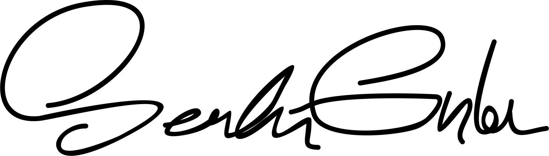serdar gunler's Signature