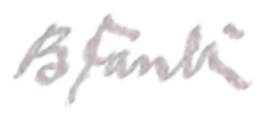 Bigan Fanli's Signature