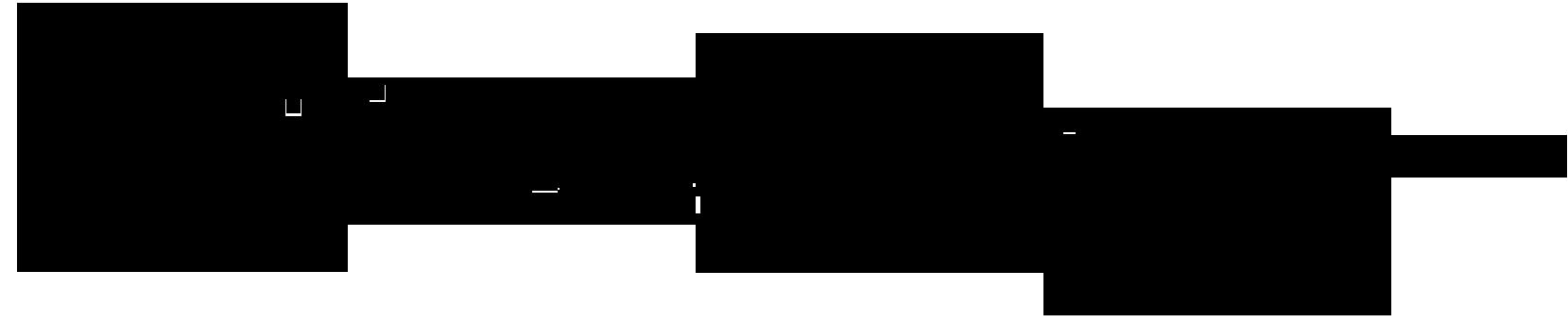 Raija Merilä's Signature