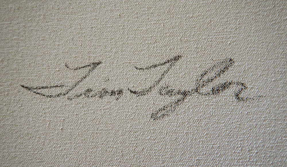 tim taylor's Signature