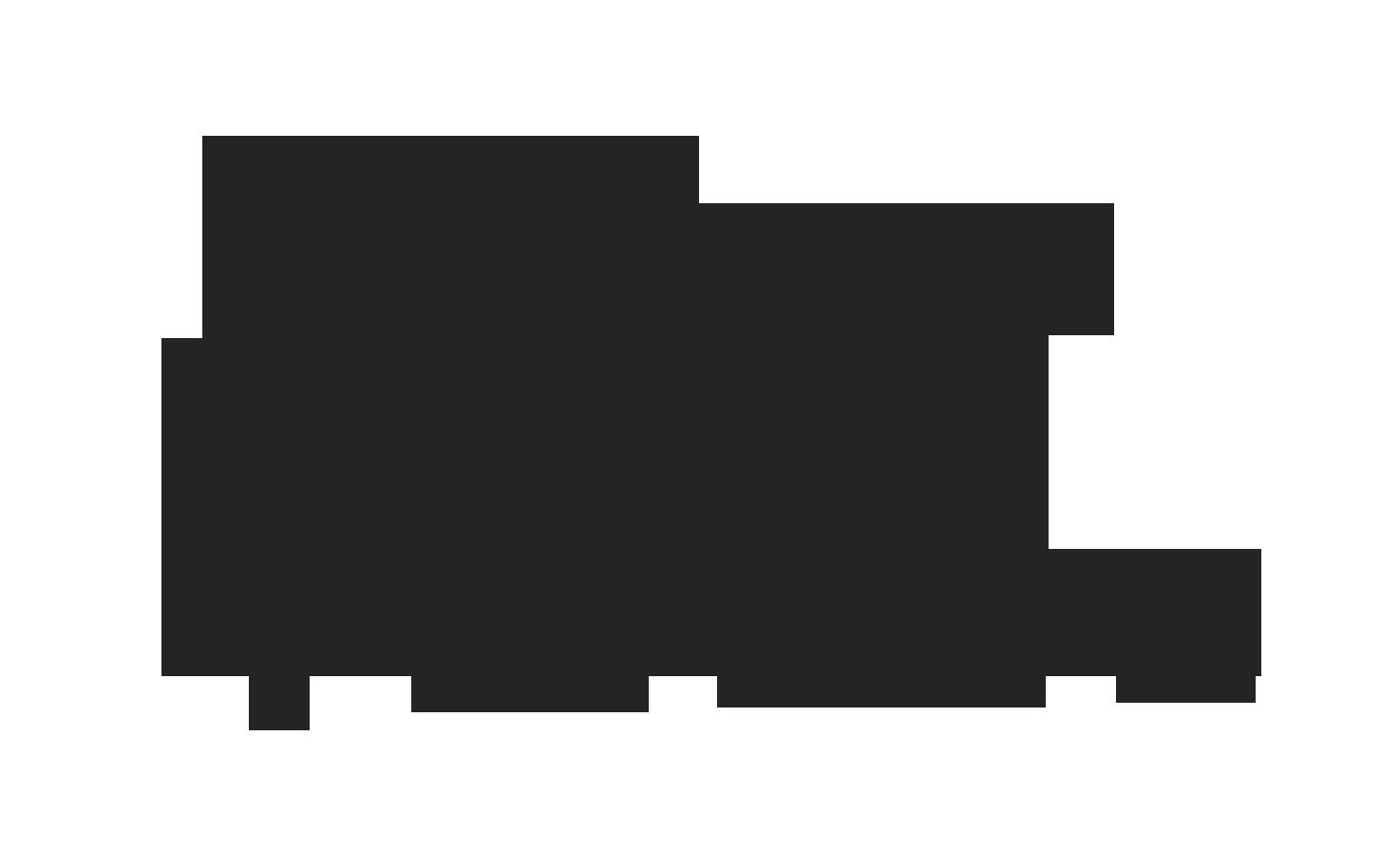 Oxana Frolova's Signature