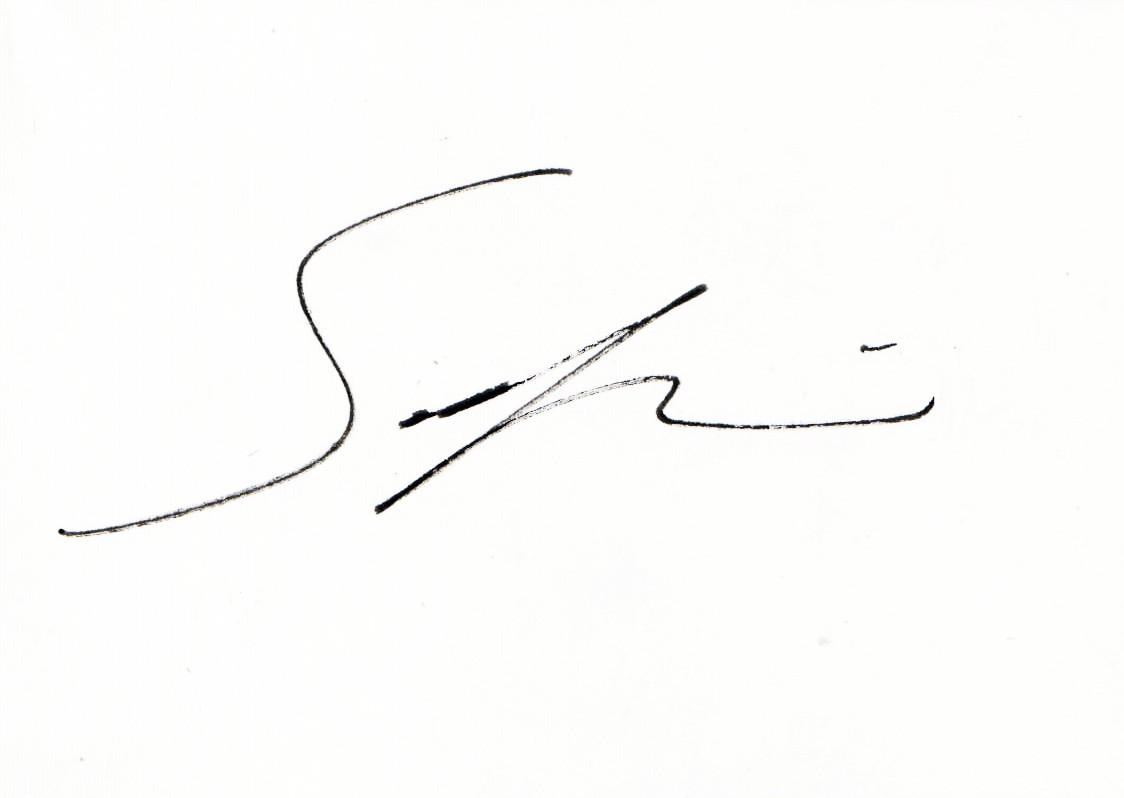 Sarkis S's Signature