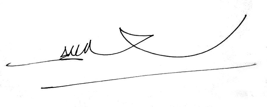 Sonny Hendrawan's Signature