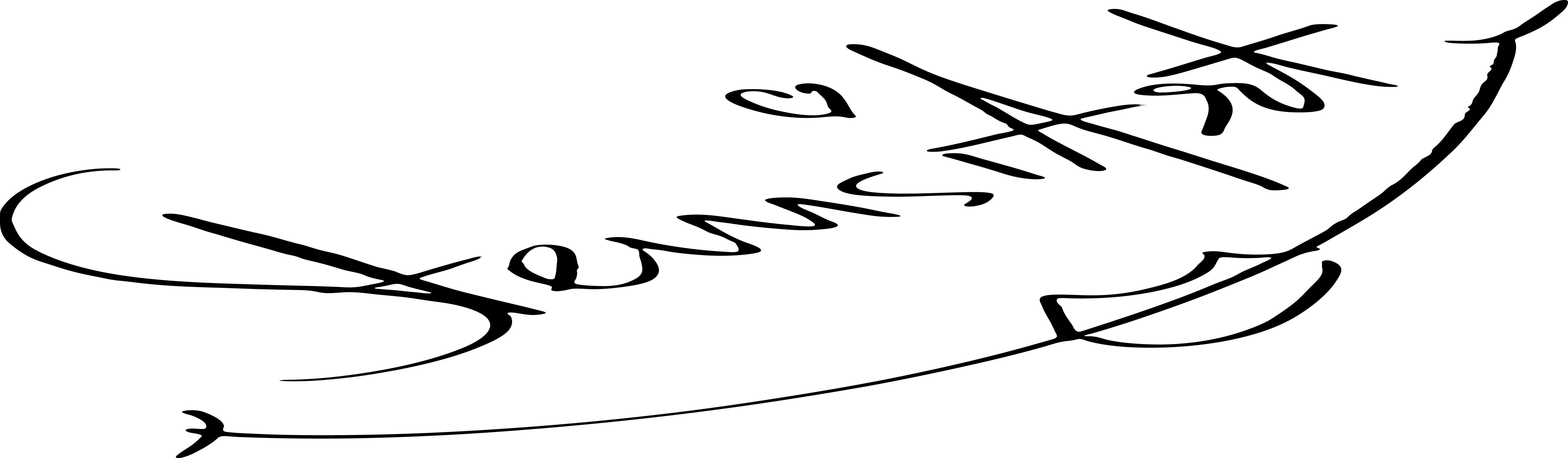 Karl Sternath's Signature