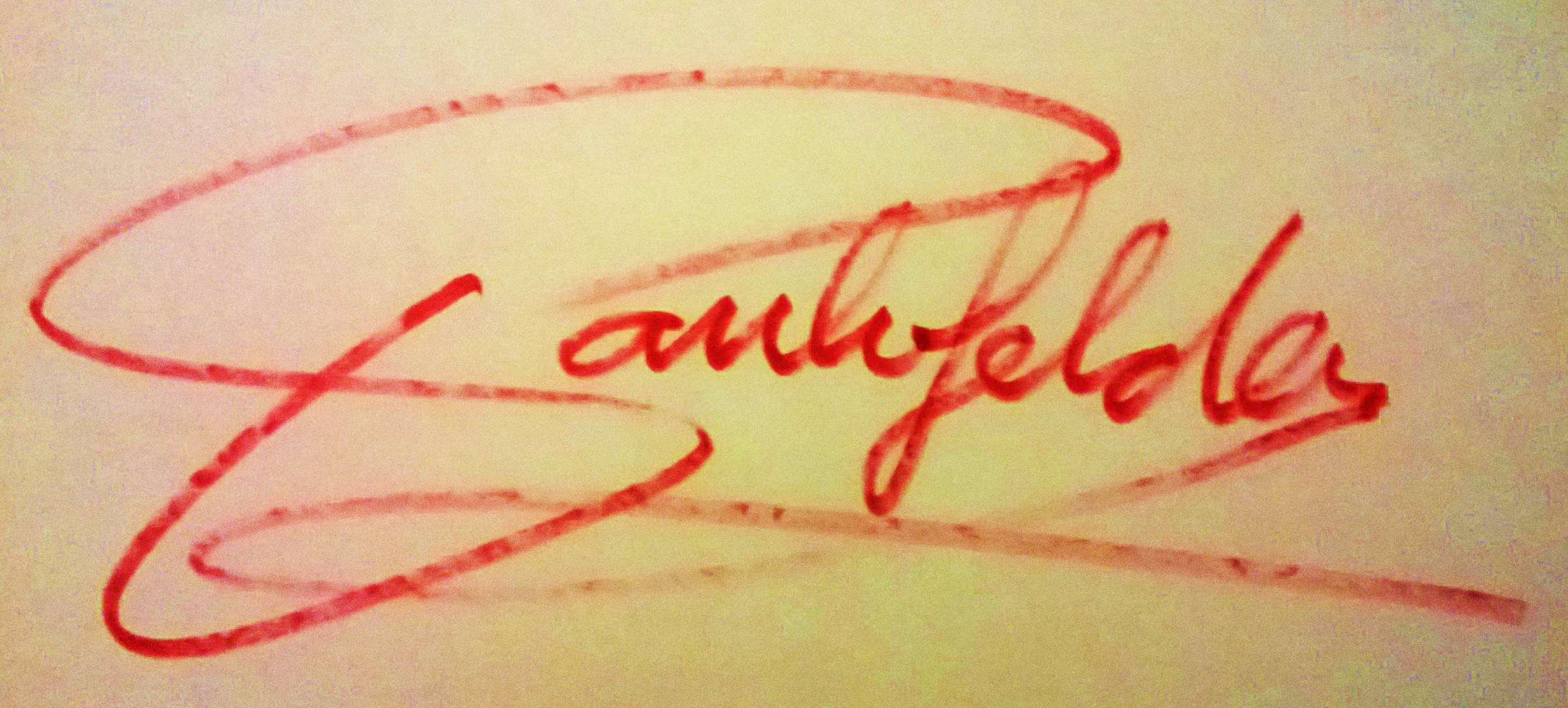 PAUL vanGelder's Signature