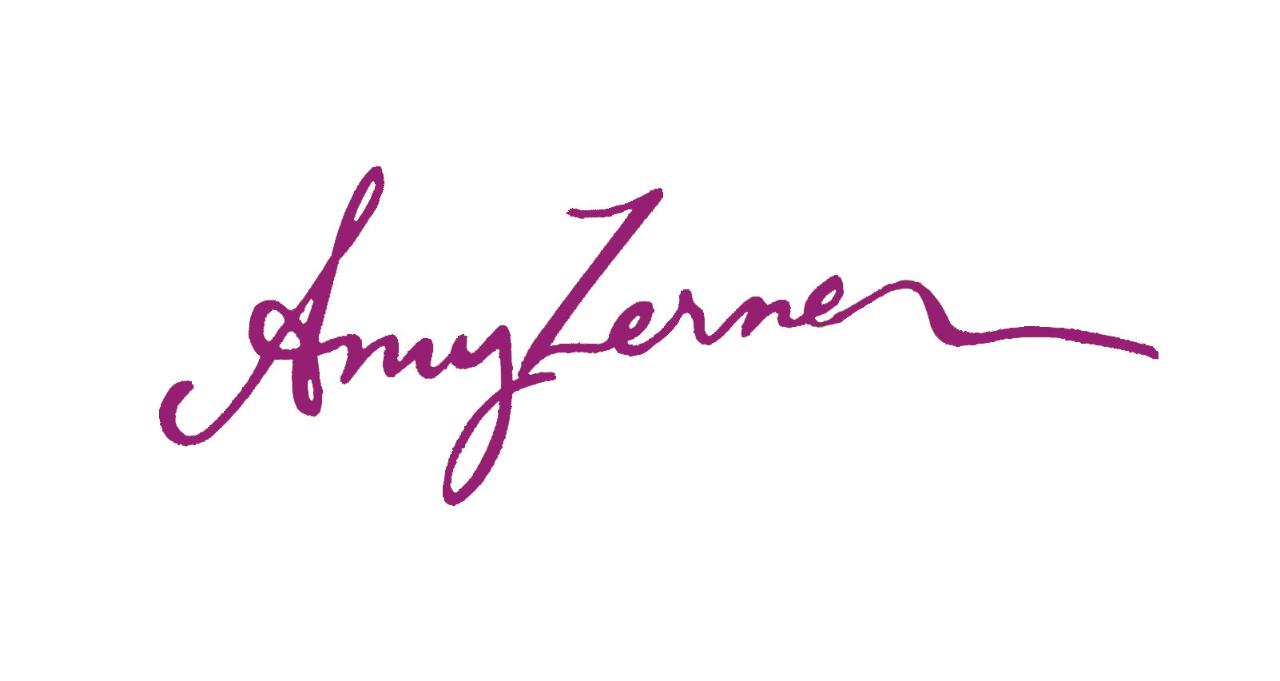 amy zerner's Signature