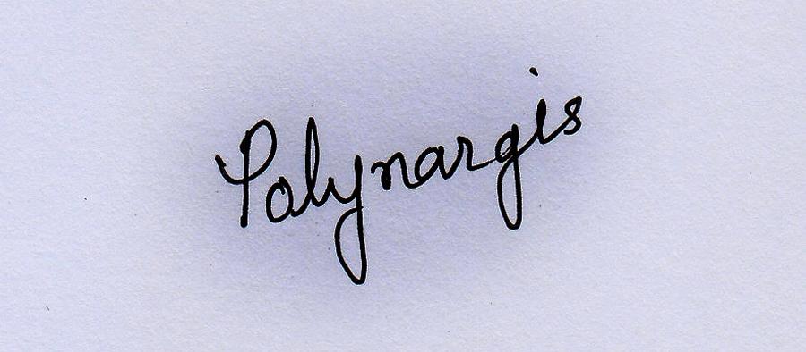 Nargis Poly's Signature