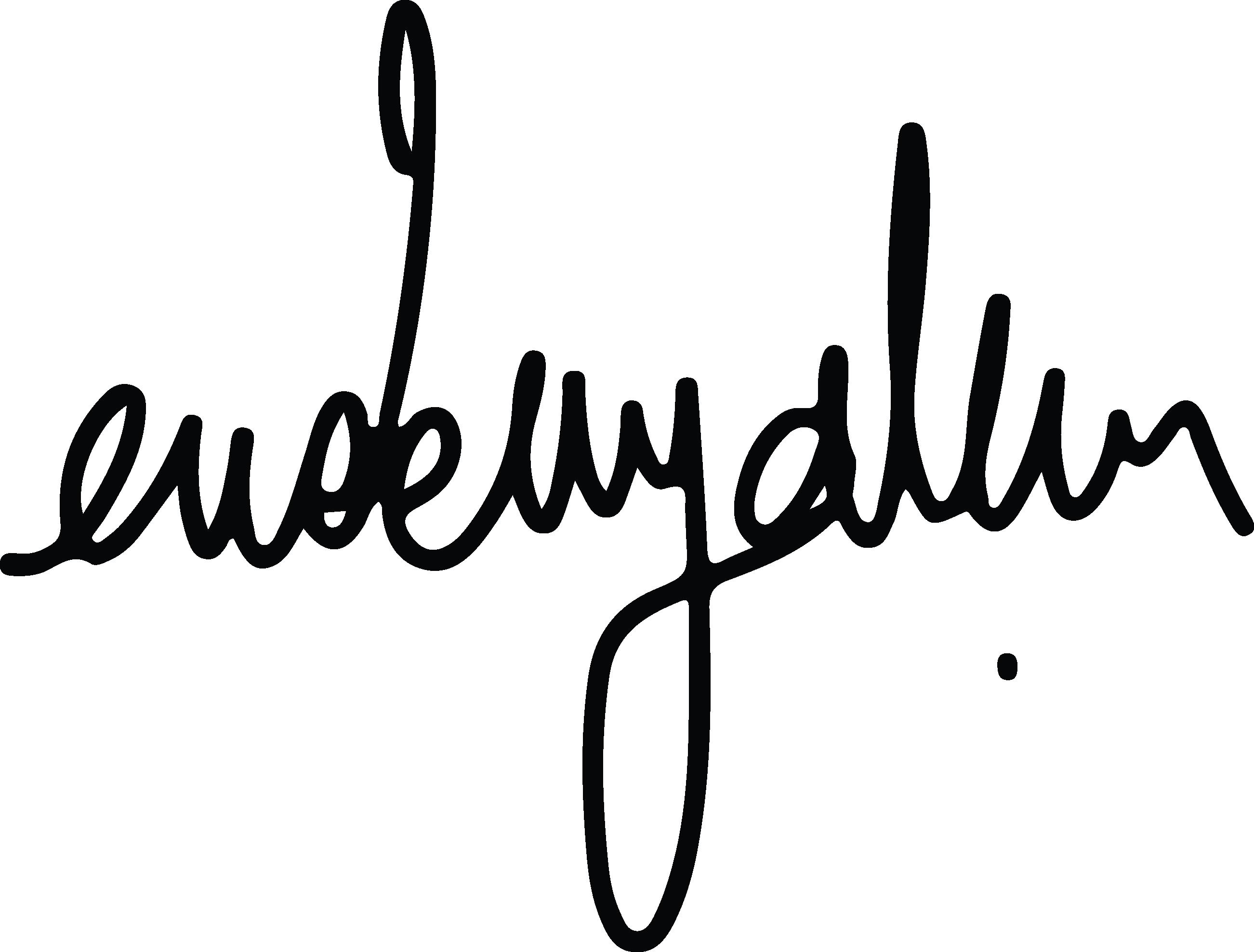 Erdem yalçın's Signature