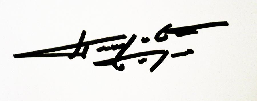 Borko Petrovic's Signature
