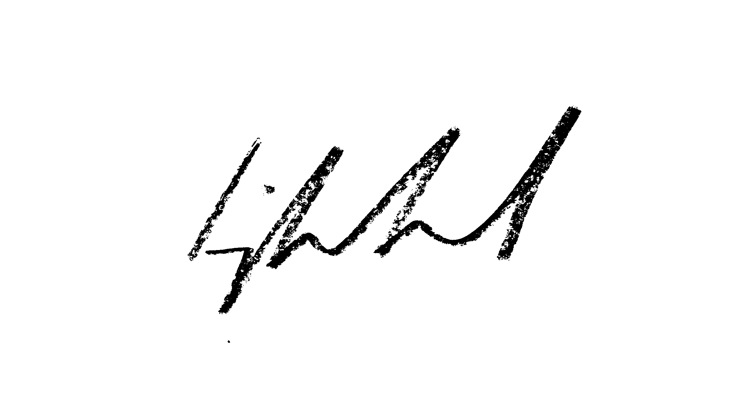 Ingrid Kamerbeek's Signature