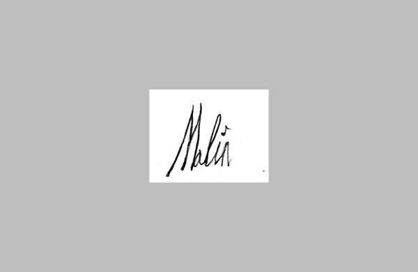 Marc Malin's Signature