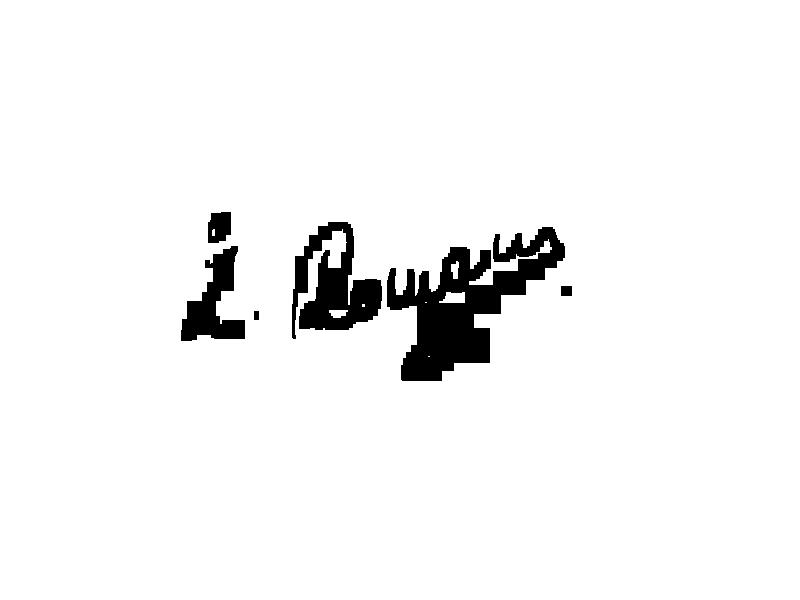 roman zaric's Signature