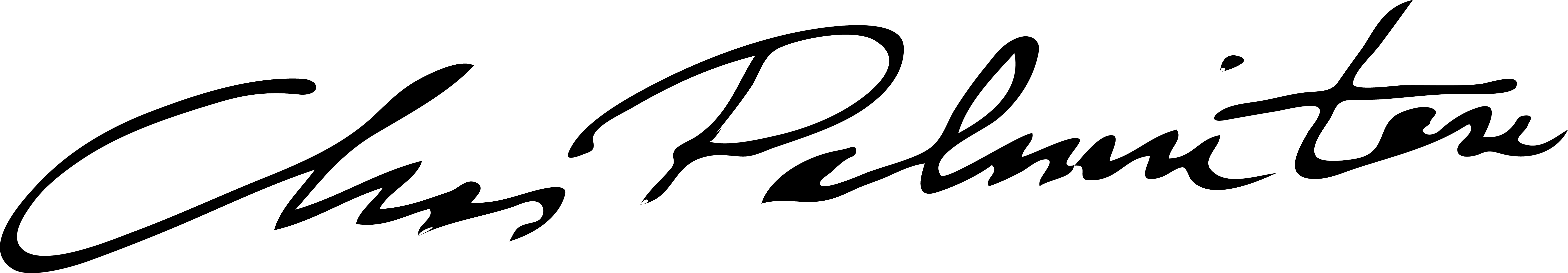 Chas Palminteri's Signature