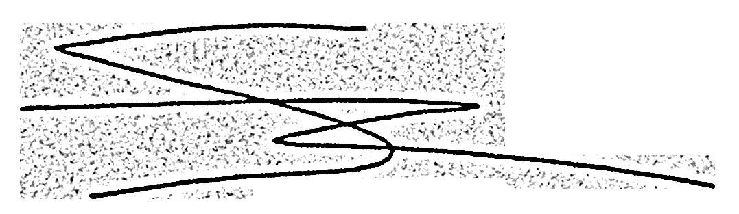 simon Raffy's Signature