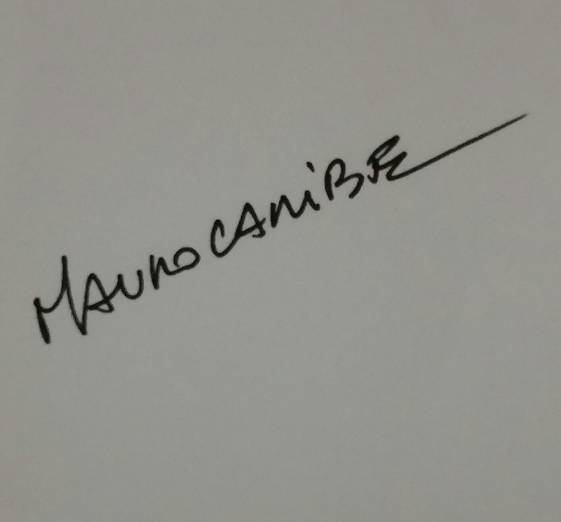 Art in fashon's Signature