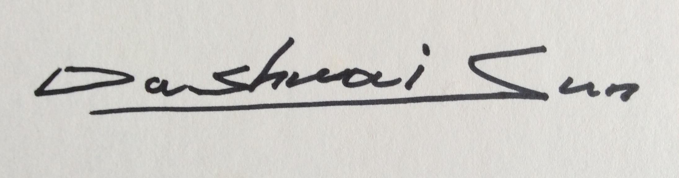 Dashuai sun's Signature