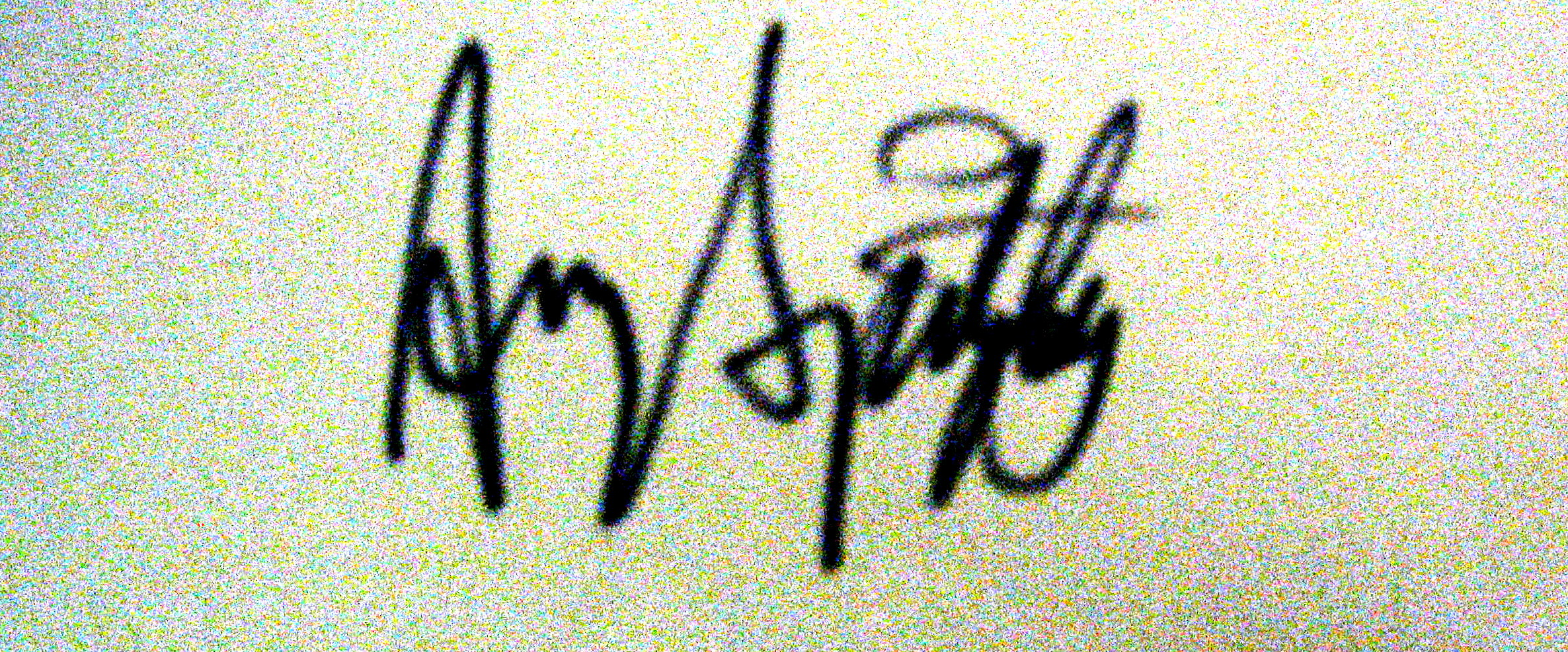 Amy Spitzley's Signature