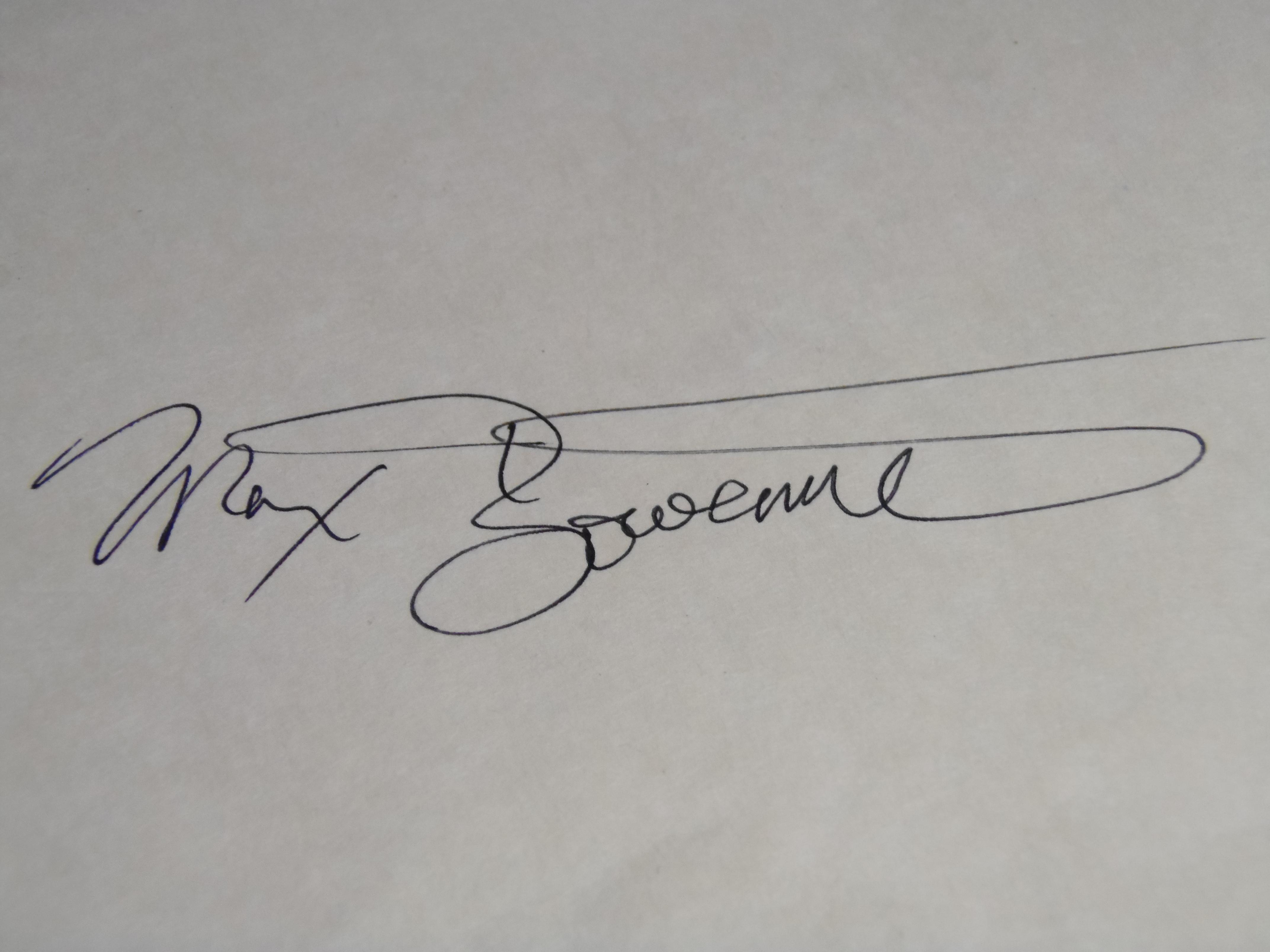max bowermeister's Signature