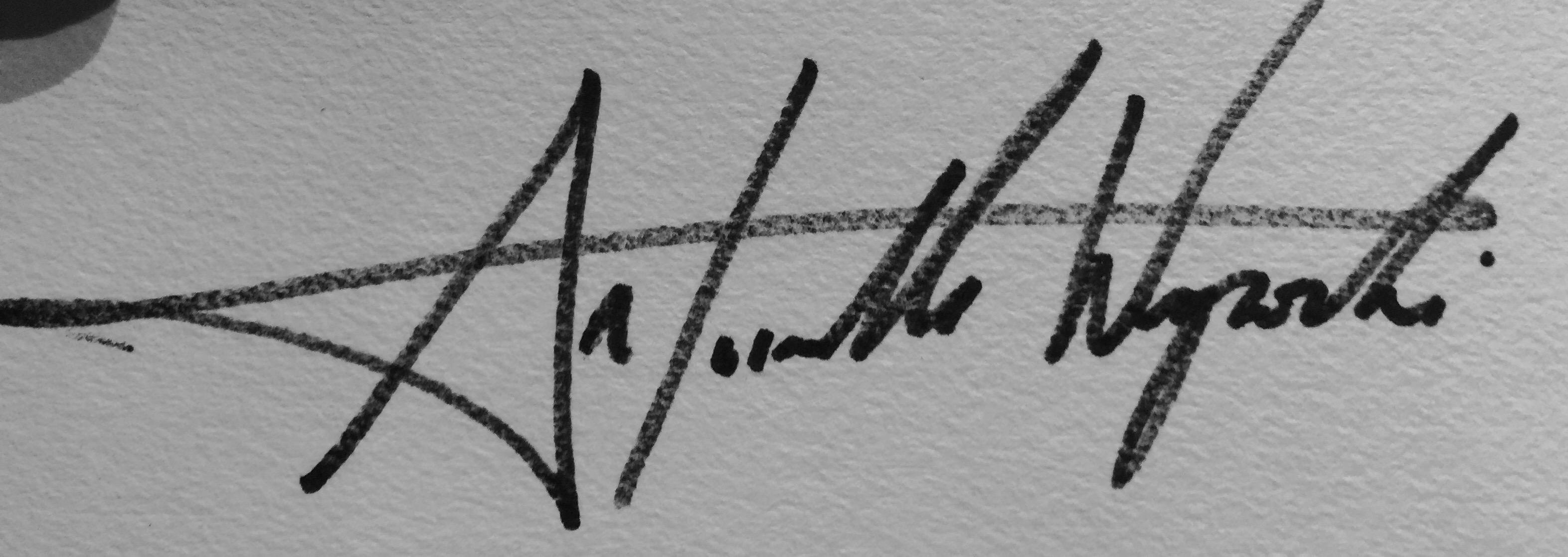 Antoinette wysocki's Signature