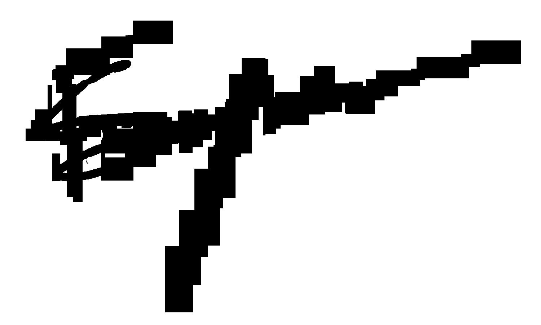 Francois Snyman's Signature