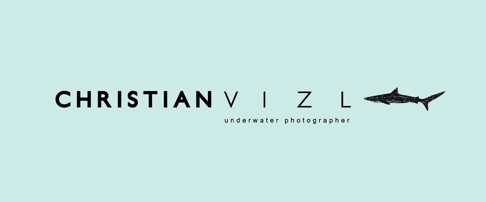 Christian Vizl's Signature