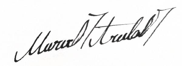 Merve Aruta's Signature
