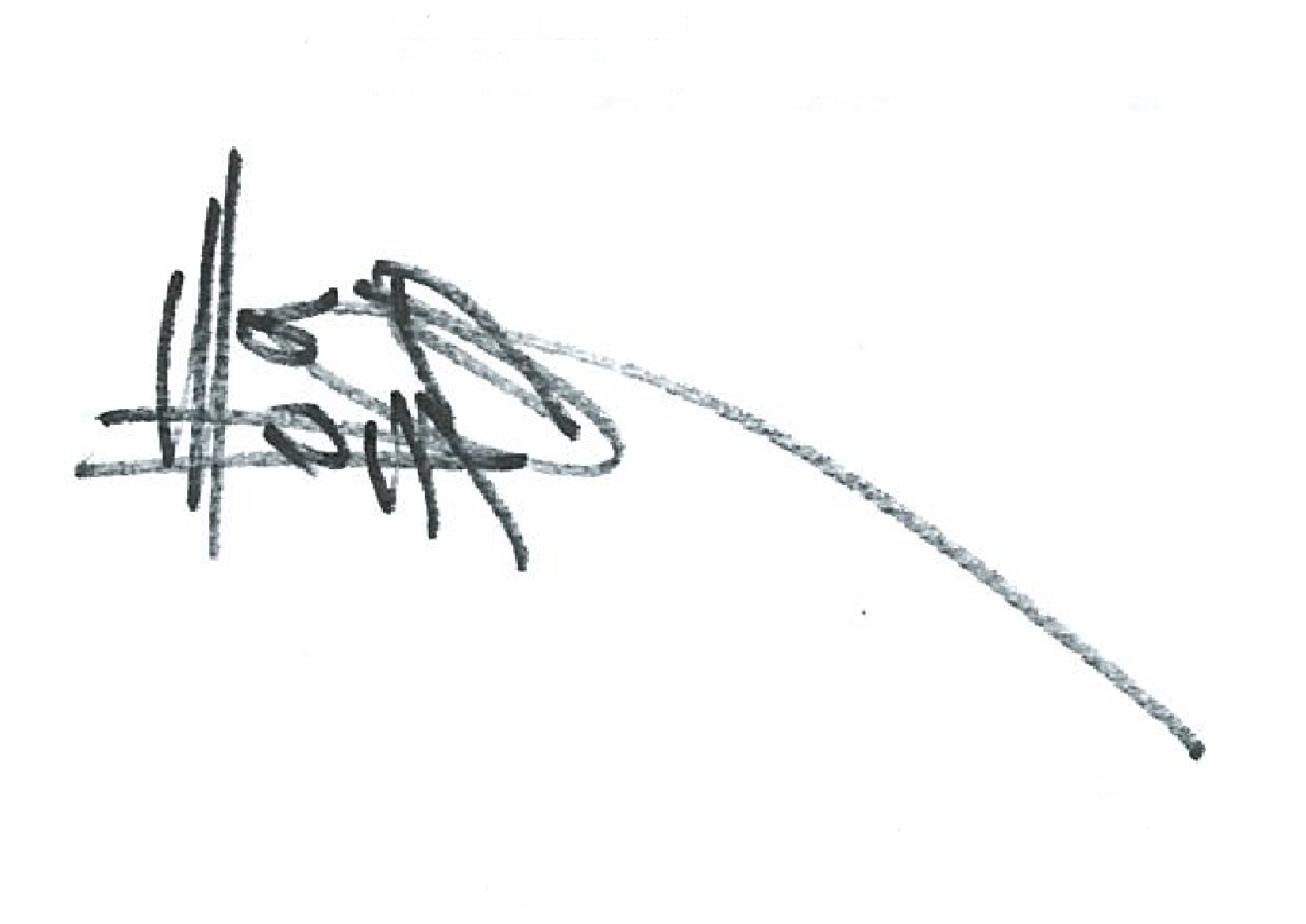 Shaun Wang's Signature