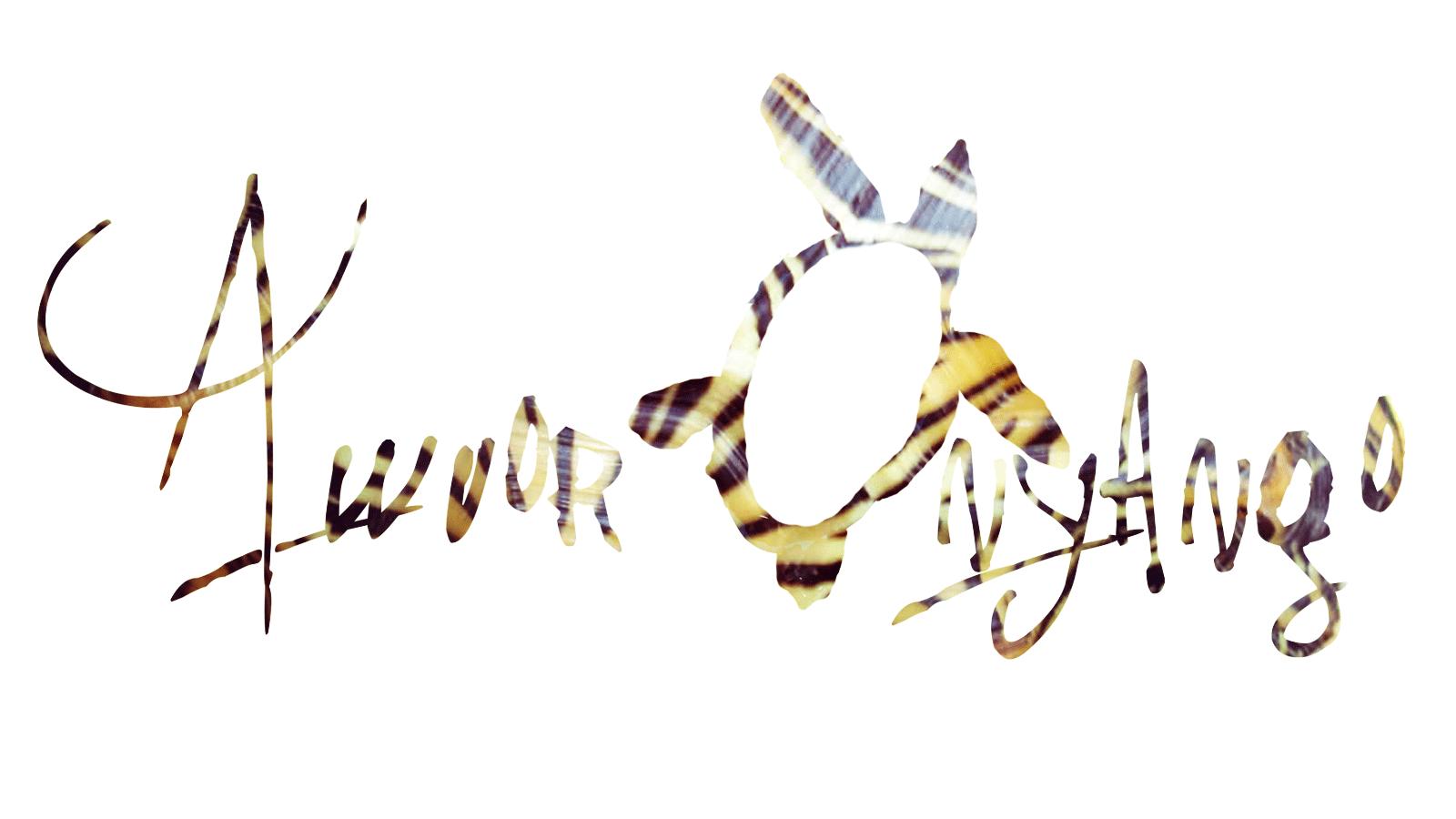 Awuor Onyango's Signature
