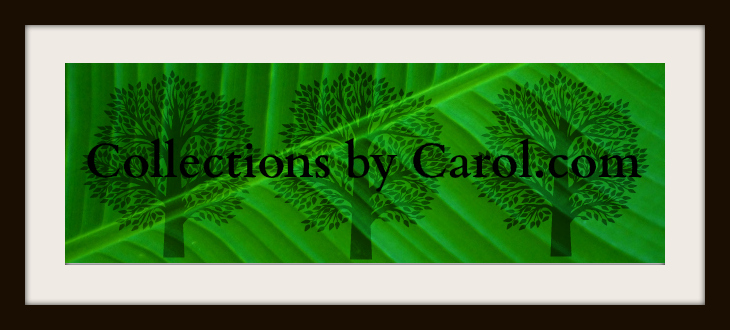 Carol Toepke's Signature