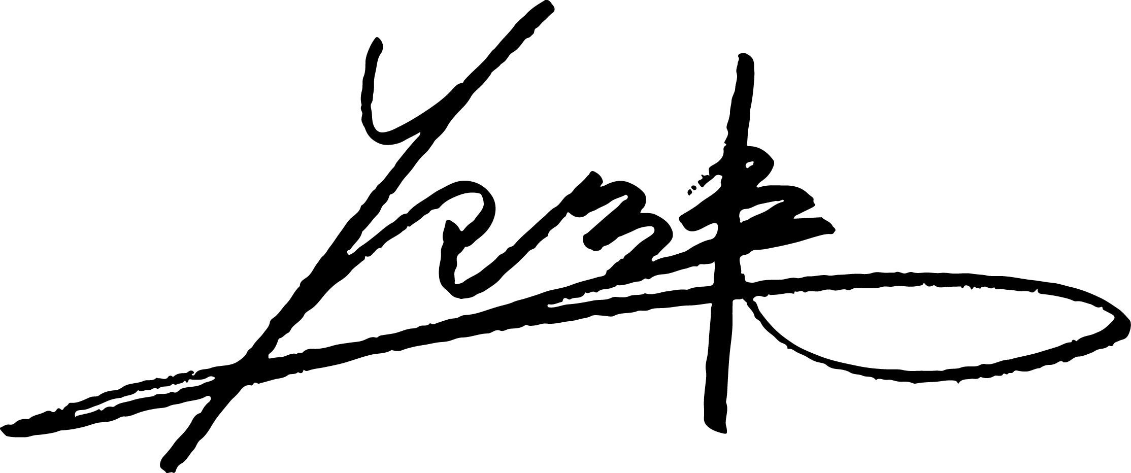Fenway Fan's Signature