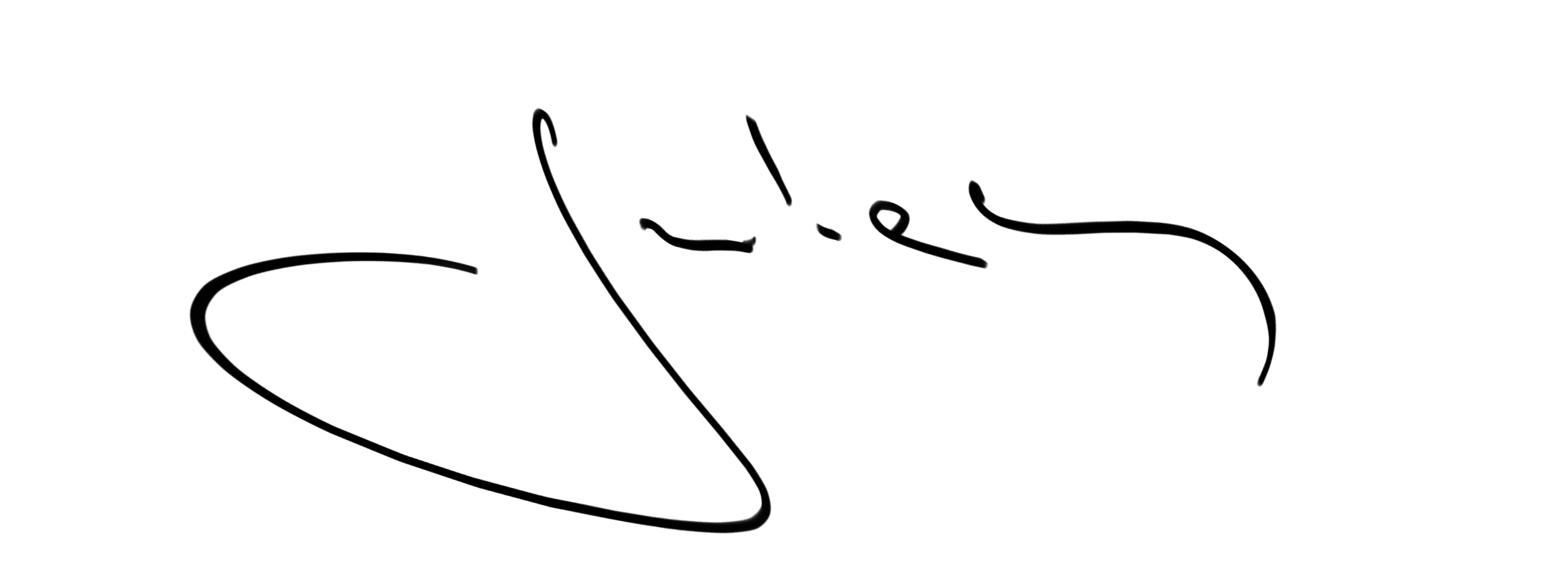 Julian Veverica's Signature