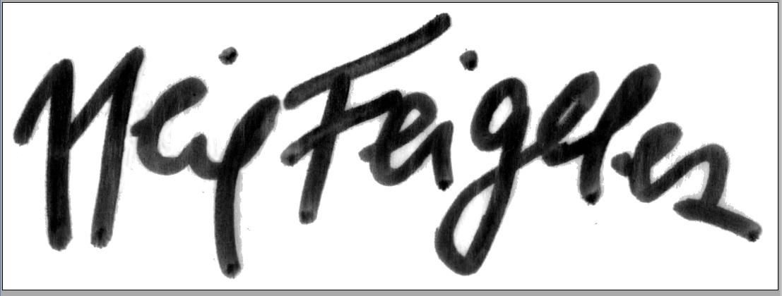 Neil Feigeles's Signature
