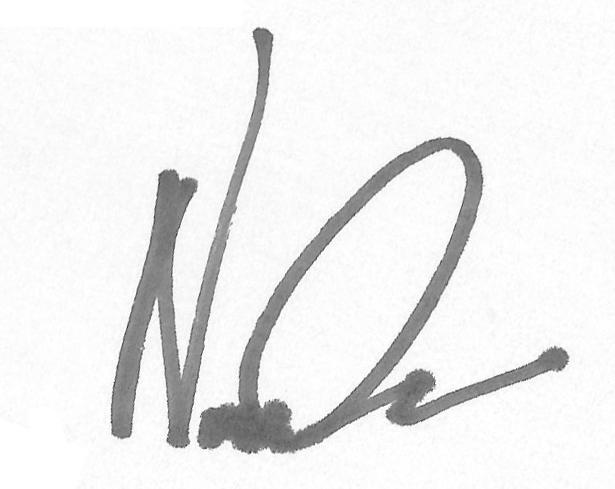 Nicolas Cascarano's Signature