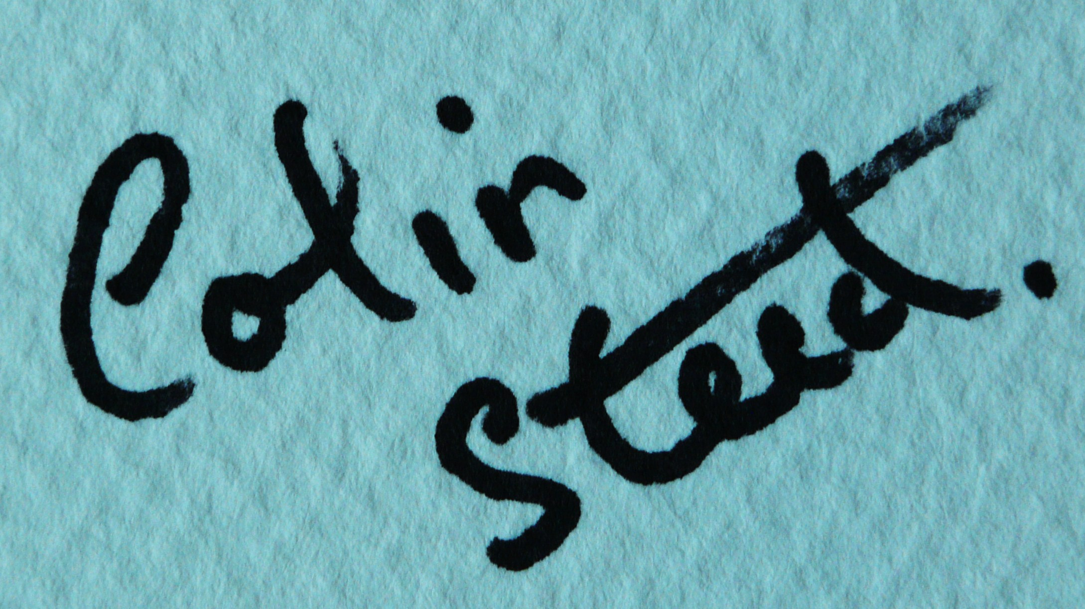 colin Steed's Signature