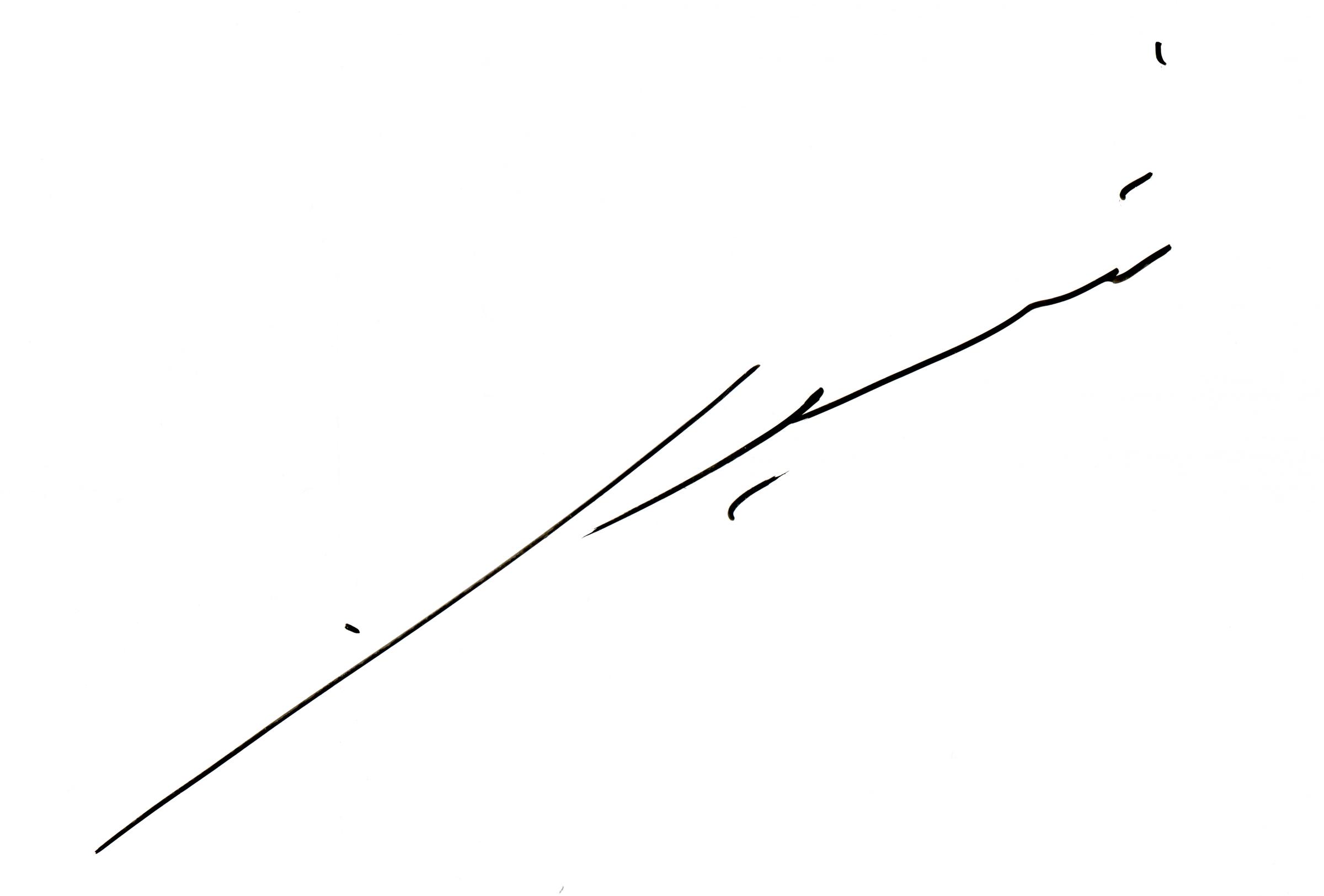 Shiela Samsuri's Signature