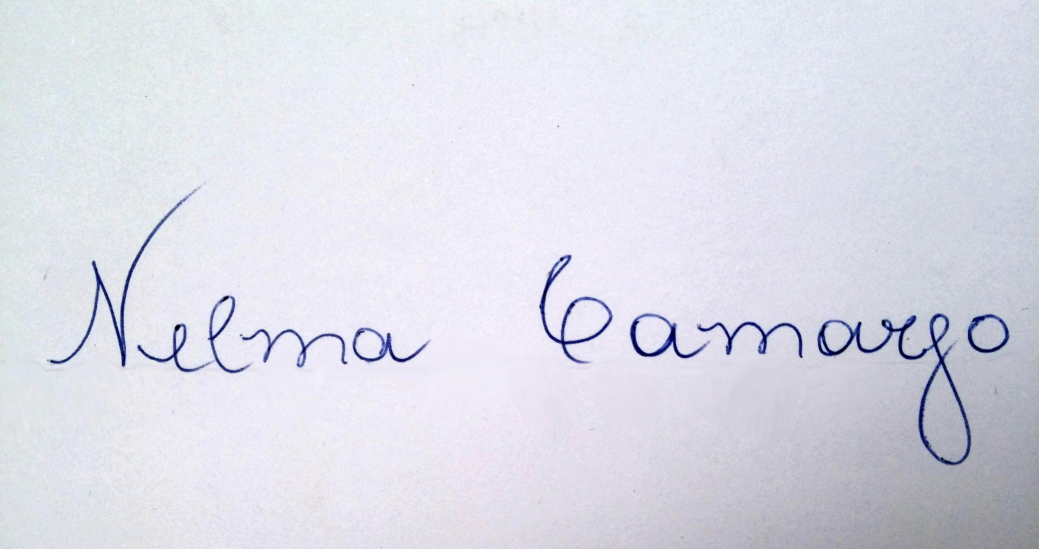 Nelma Camargo's Signature