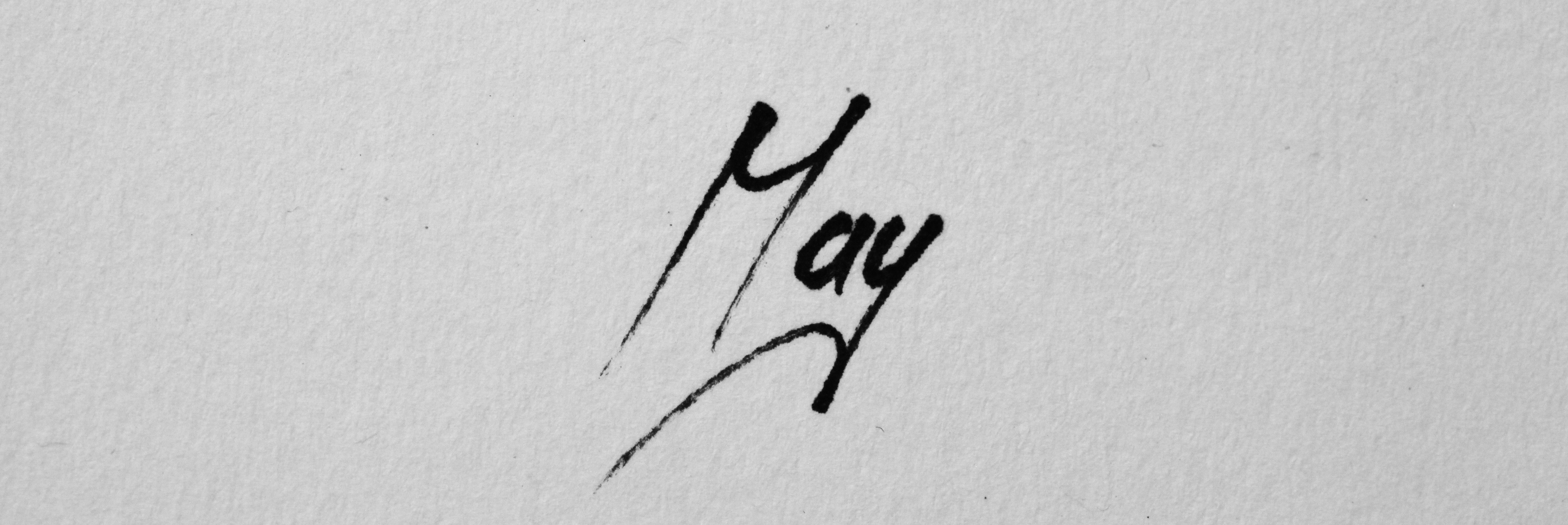 Damir May's Signature