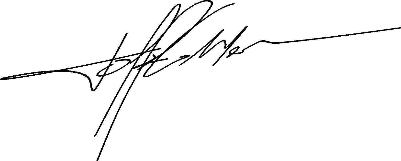 MaSSIMO Toffolo's Signature