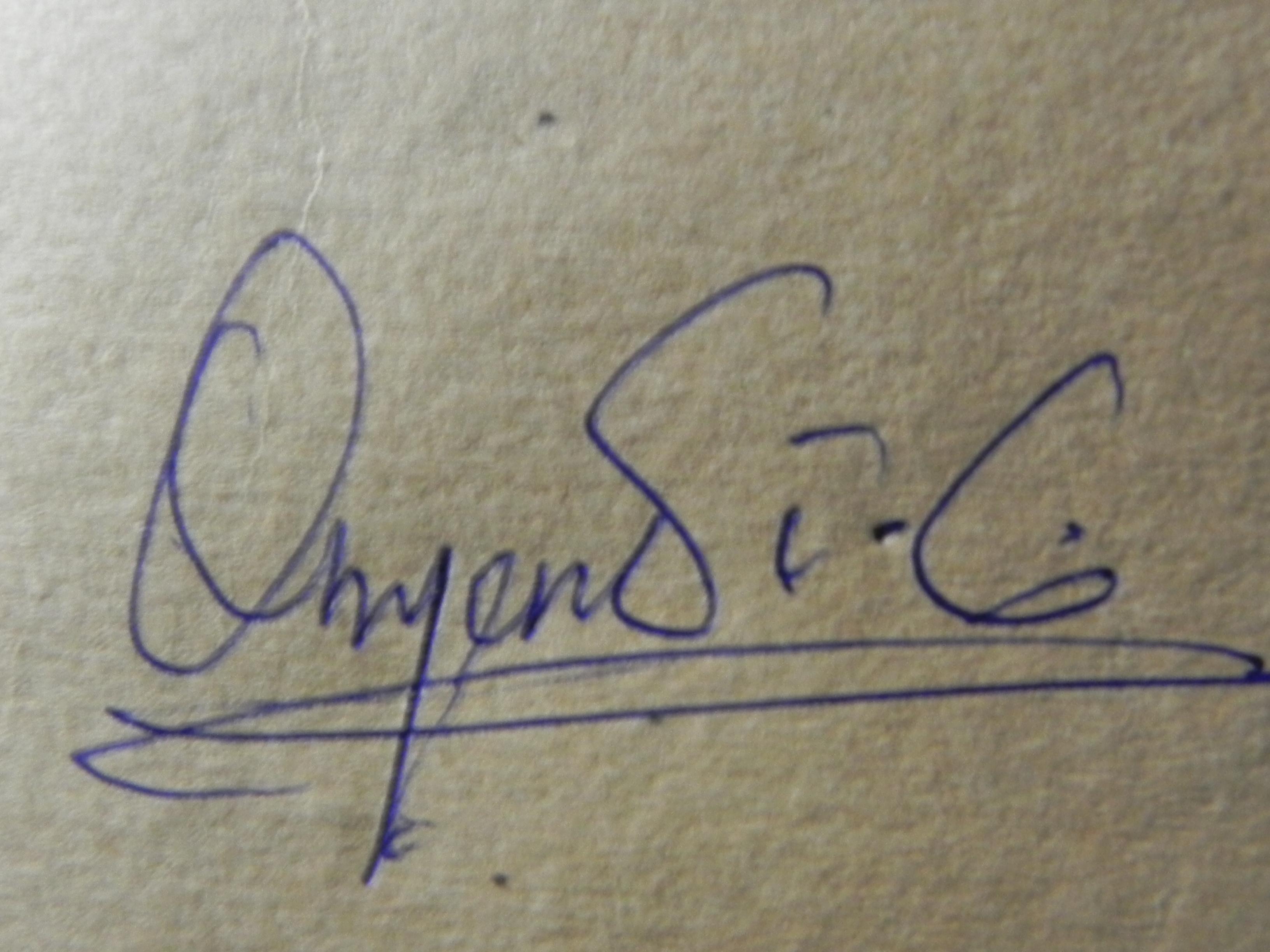 Onyendi Chukwudi's Signature