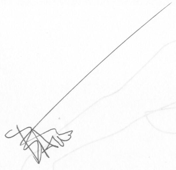 Bart Soutendijk's Signature