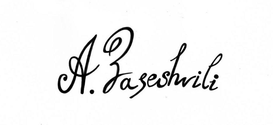 Ana Zaseshvili's Signature