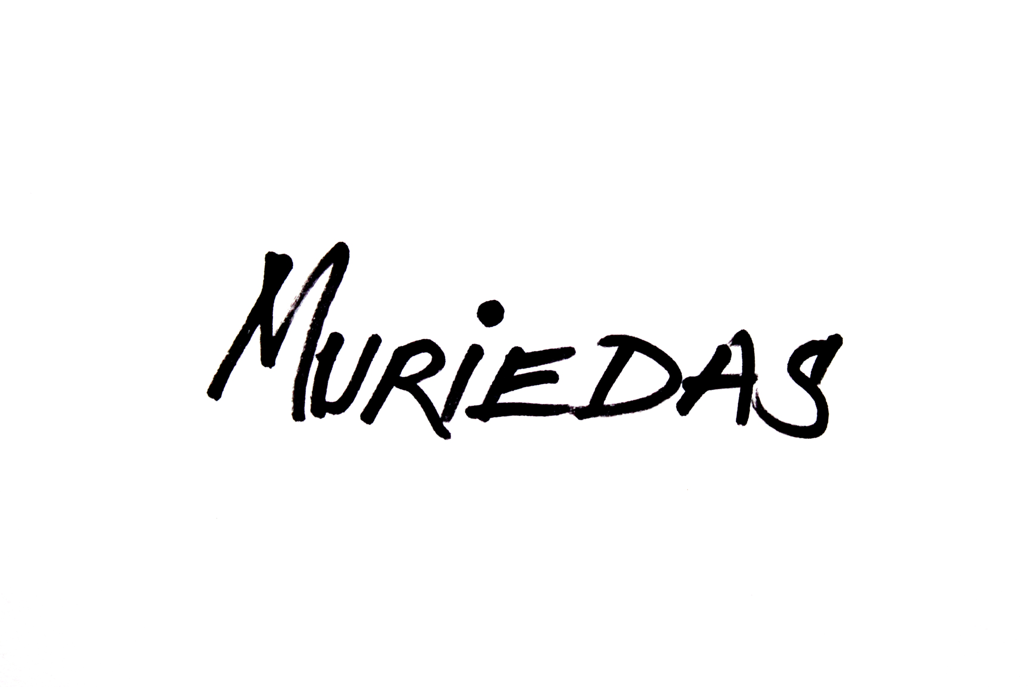 Lorenzo Muriedas's Signature