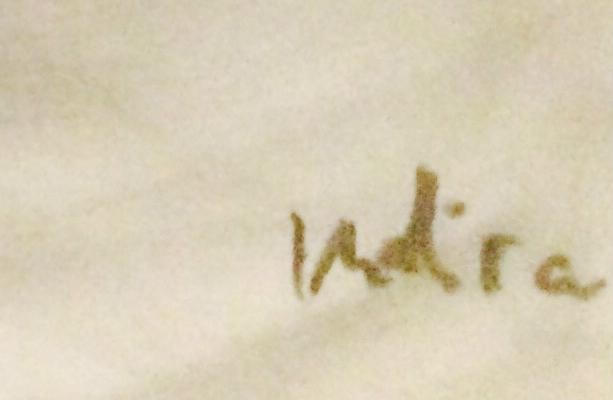 Indira Kusmic's Signature