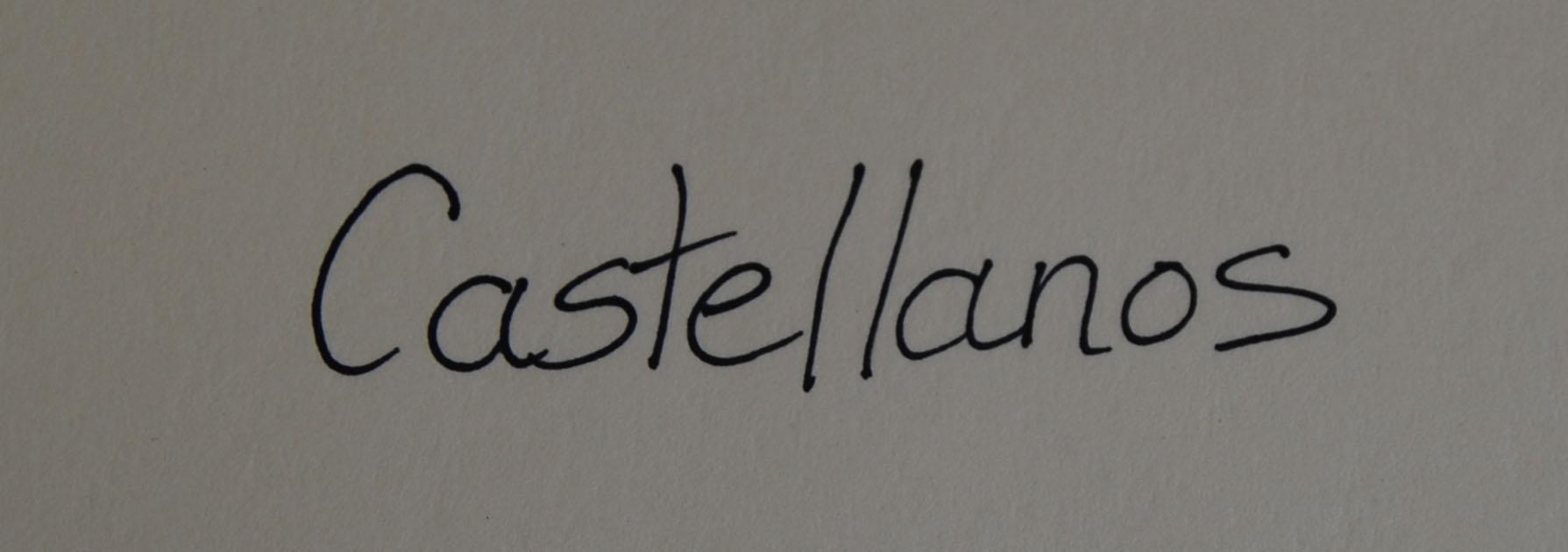 Teresa Castellanos's Signature