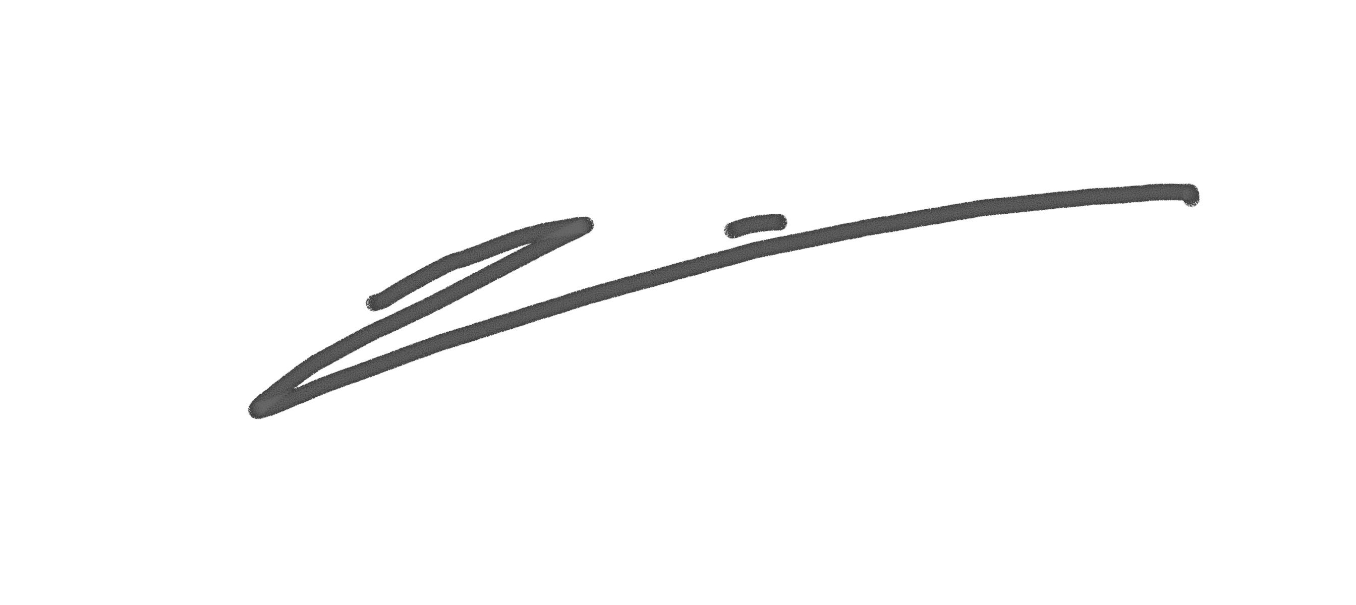 joana toro's Signature