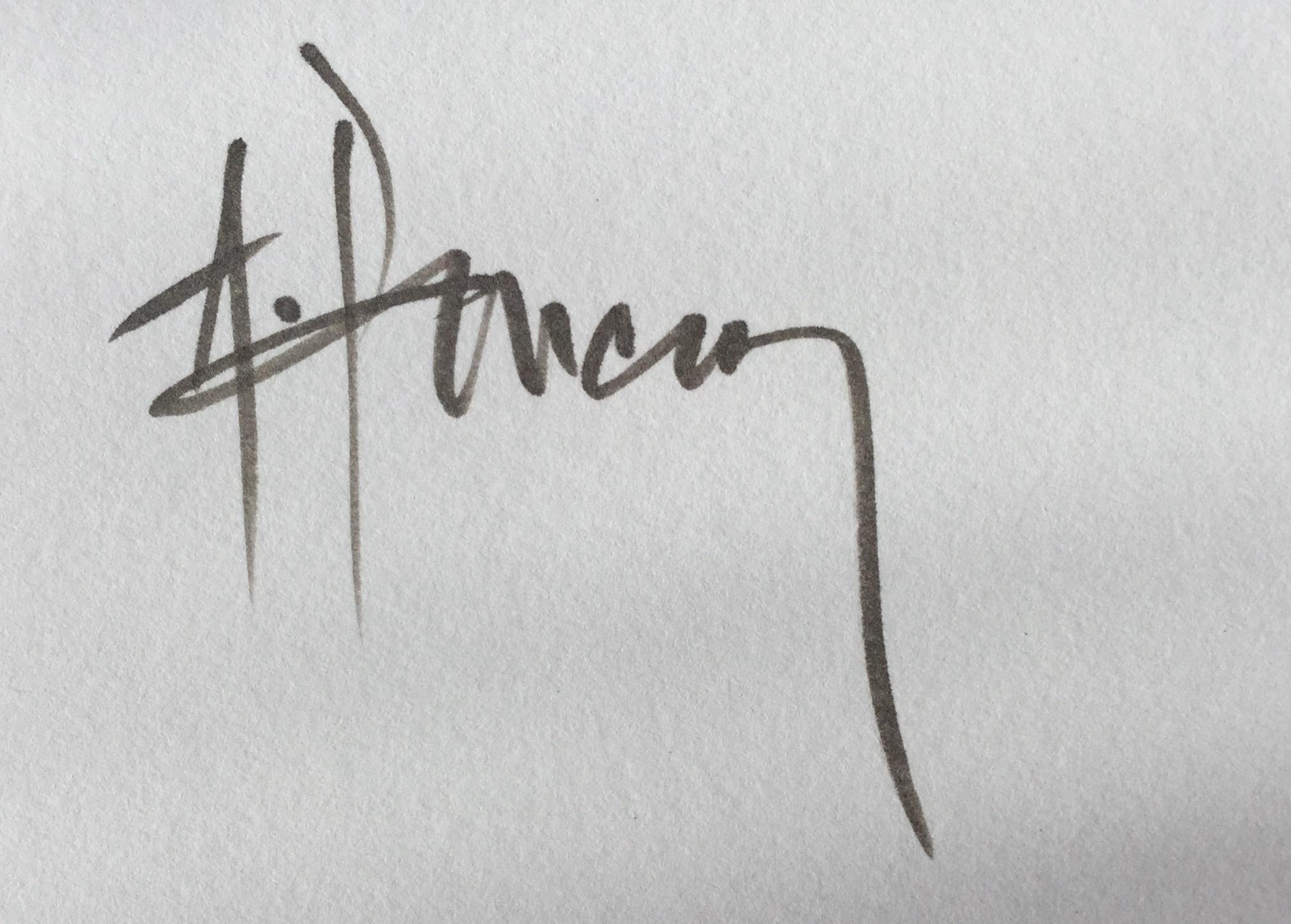Ales Pancner's Signature