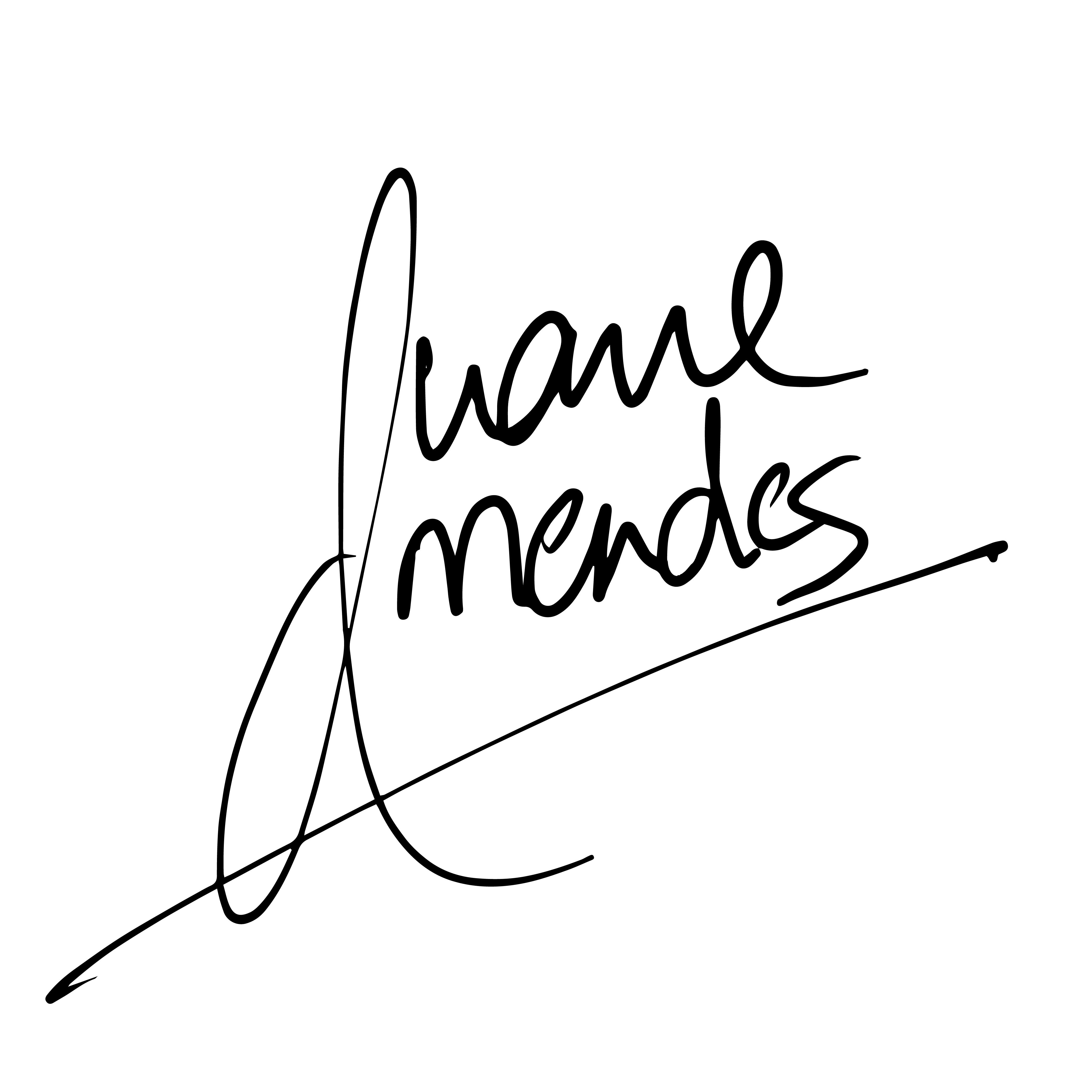 Duane Mendes's Signature