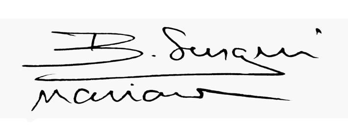 Sergiu-Marian  Bechian's Signature