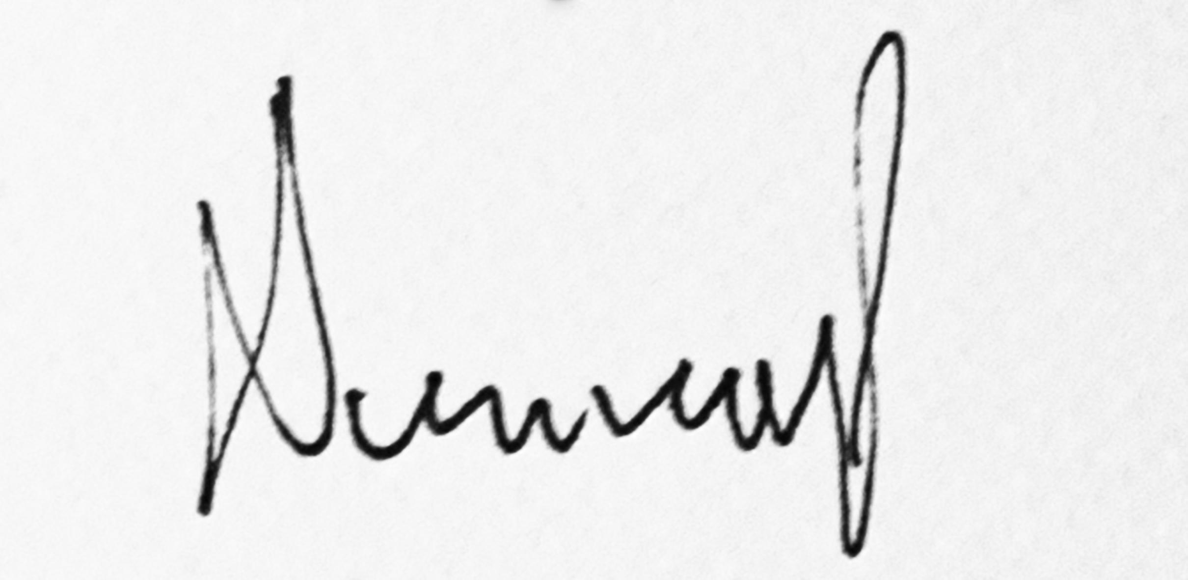 Damira Piližota's Signature