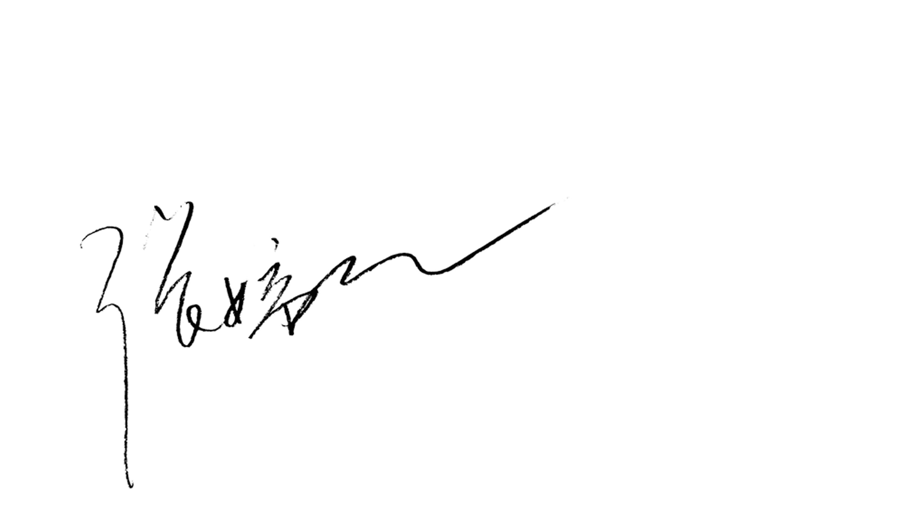 tingting zhang's Signature
